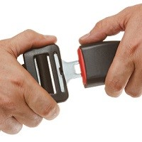 popular type of seat belt extender